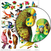 Parrots Collage Sheet