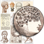 Phrenology Collage Sheet