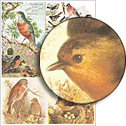 Robin Red Breast Collage Sheet