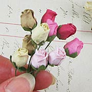 Small Rose Buds - Cream-Pink-Brown*