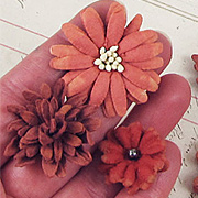 Mulberry Mini Flower Mix - Teastained Red